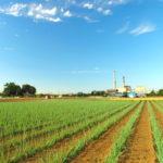 2022年の生産緑地法満了で避けたい大混乱 榊 淳司(住宅ジャーナリスト)