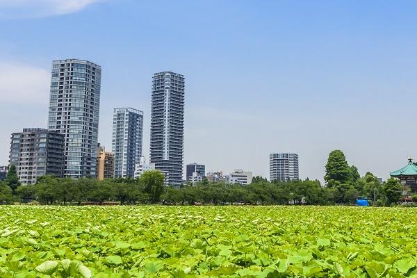 上野のマンション