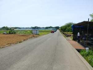 テーブルガーデン篠原への道